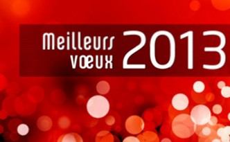 3d-2013-carte-de-voeux-thumb27208119